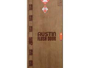 Austin Flush Door
