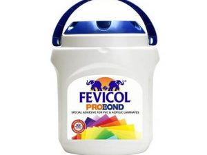 Buy Pidilite Adhesives Such As Fevicol Products Online