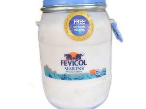 Fevicol marine