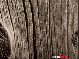 Century Veneers NatzuraWoods - Natural Veneer